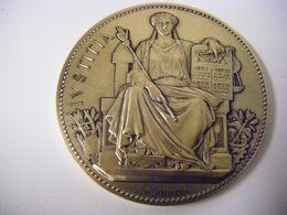 Grande Médaille En Argent Massif Poids 84 Grammes Chambre Des Huissiers De Justice 1989 Graveur Borel - Professionali / Di Società