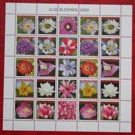 Surinam / Suriname 2009 Bloemen Flowers Blumen Fleurs Complete Sheet  (ZBL 1669-1678 MI 2345-2354) POSTFRIS / MNH ** - Surinam