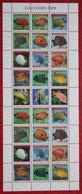 Surinam / Suriname 2009 POISSONS TROPICAUX FISH VIS VISSEN Complete Sheet (ZBL 1616-1627 Mi 2291-2302) POSTFRIS / MNH ** - Surinam