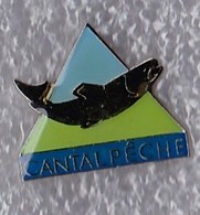 PIN S POISSON TRUITE CANTAL PECHE - Badges
