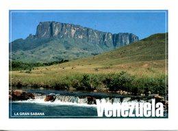 VENEZUELA. Carte Postale écrite. La Gran Sabana. - Venezuela