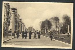 +++ CPA - BRUSSEL - Expo BRUXELLES 1935 - Avenue Du Centenaire - Eeuwfeestlaan  // - Expositions Universelles