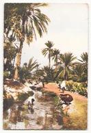 TUNISIE TOZEUR A LA SEGUIA - Túnez