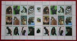 Surinam / Suriname 2010 Apen Primates Affen Monkey Singes Complete Sheet (ZBL 1744-1755 MI 2421-2432) POSTFRIS / MNH ** - Surinam