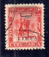 LIBIA LIBYA 1951 REGNO INDIPENDENTE EMISSIONE PER LA CIRENAICA CYRENAICA 12m USATO USED OBLITERE' - Libia