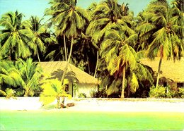 MALDIVES. Carte Postale écrite. Kurumba Village. - Maldives