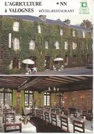 """Valognes Hôtel-restaurant """"L'Agriculture"""" - Hotels & Restaurants"""