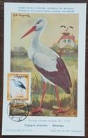 Albanie - Carte Maximum / CM 1965 - YT N°797 - Faune / Oiseaux Migrateurs - Albania