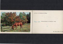 VP13.557 - PARIS - Noblesse - Autographe De Mr Le Duc & La Duchesse De BRISSAC - Autographes