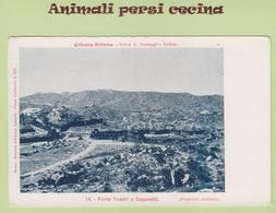 AFRICA ORIENTALE - ERITREA - COLONIA - FORTE TOSELLI A SAGANEITI - CARTOLINA - LT60-034 - Eritrea
