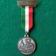 ANSI 15°  Congresso AESOR 24/5/1992 Tom - Italia