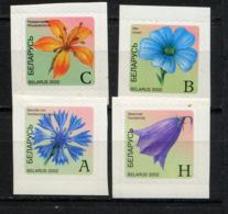 BIELORUSSIE BELARUS 2002, FLEURS / FLOWERS, Autocollants, 4 Valeurs, Neufs / Mint. R1795 - Belarus