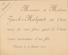 Carton Pour La Naissance D'alfred Jacob Verviers 1895 - Naissance & Baptême