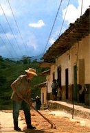 COLOMBIE. Carte Postale écrite.Antioquia/Café. - Colombia