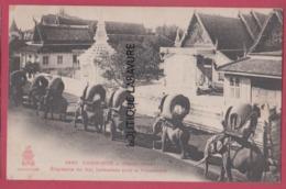 CAMBODGE--PHOM-PENH----Elephants Du Roi Arnaches Pour La Promenade--beau Plan Animé - Cambodge