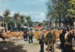 BRIVE ,,,,LE MARCHE  AUX  BESTIAUX ,,,, Voyage 1967 ,,, - Brive La Gaillarde