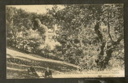 CP-PRADES-d'AUBRAC - Dans Les Prés Du Caussanel L'Automne - Autres Communes