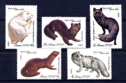 URSS SU 1980, ANIMAUX A FOURRURE, RENARD VISON RAGONDIN ZIBELINE... 5 Valeurs, Neufs / Mint. R187 - 1923-1991 USSR