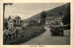 Wildhaus - Auto - SG St. Gallen