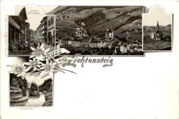 Gruss Aus  Lichtensteig - Litho - SG St. Gall