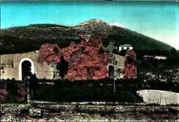 81995) CARTOLINA DI CASSINO- ANFITEATRO COLOSSEO E MONTECASSINO-VIAGGIATA - Italia