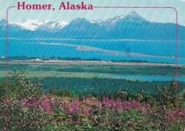 Alaska Homer Panoramic View 1987 - United States