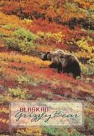 Alaska Alaskan Grizzly Bear 1998 - United States