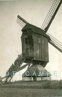 DEURNE Bij Diest (Vlaams-Brabant) - Molen/moulin - Zeldzame Close-up Van De Verdwenen Doornemolen Tijdens 1914-1918 - Diest