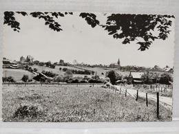 Berismenil. Panorama Vu Du Mesty - La-Roche-en-Ardenne