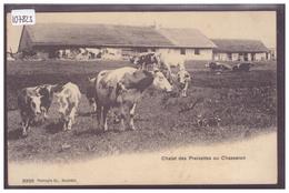 DISTRICT DE GRANDSON - VACHES AU CHALET DES PREISETTES - TB - VD Vaud
