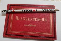 2769) Belgio Blankenberghe Leporello 12 Foto Albumina Fine '800 - Belgio