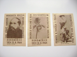 Czechoslovakia Series 3 Matchbox Label 1964 - Benedikt Roezl - Traveller, Botanist, Collector Of Orchids - Boites D'allumettes - Etiquettes