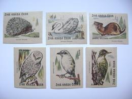 Czechoslovakia Series 6 Matchbox Label 1964 - Animals - Live Beauty - Hedgehog Swan Weasel Owl Bird - Boites D'allumettes - Etiquettes
