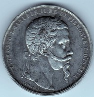 Imposante Médaille De Vittorio Emanuele II Roi Du Piémont Et De L'Italie Annexion De L'Italie Centrale Au Piémont 1860 - Royaux/De Noblesse