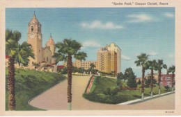 "Texas Corpus Christi View In ""Spohn Park"" Curteich - Corpus Christi"