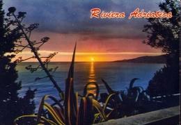Riviera Adriatica - 202 - Formato  Grande Viaggiata – E 9 - Non Classificati