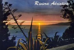 Riviera Adriatica - 202-a - Formato Grande Viaggiata – E 9 - Non Classificati