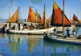 Riviera Adriatica - Barche E Pescatori - Formato Grande Viaggiata – E 9 - Non Classificati