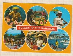 8AK3996 Scènes Of The BAHAMAS Multi Vues  2 SCANS - Bahamas
