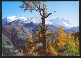 72398/ FINHAUT, Vue Depuis Emosson Sur Finhaut, Les Aiguilles Du Tour, Le Chardonnet Et L'Aiguille Verte Avec Les Drus - VS Valais