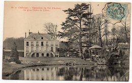 """CHATENAY-MALABRY-1904-Pépinières Du Val D'Aulnay-Le Gros Cèdre Du Liban--cachet Ambulant"""" Sceaux à Paris"""" - Chatenay Malabry"""