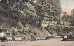 CASTLE GROUNDS, GUILDFORD. THE SURREY PICTORIAL POST CARD. CIRCULEE 1900s SURREY A BUENOS AIRES. TIMBRE ARRACHE- BLEUP - Surrey