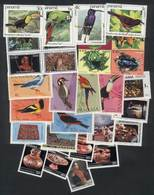 PANAMA: Lot Of Stamps And Complete Sets + Souvenir Sheets, Very Thematic, All Of Excellent Quality, LOW START! - Panama