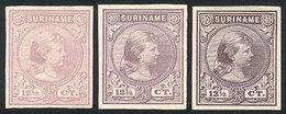 SURINAME: Sc.26, 1892/3 Queen Wilhelmina 12½c., 3 TRIAL COLOR PROOFS (different Colors), Imperforate, Excellent Quality, - Surinam