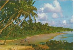 Sri Lanka ( Voir Timbres - Sri Lanka (Ceylon)