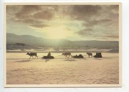 Suède - Raiden : Samerna (Samis) Flyttar Till Varvivest. The Lappics Moving To The Mountains (cp Vierge) - Suède