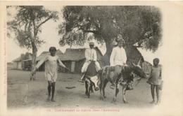 MADAGASCAR COMMERCANT DE BOEUFS DANS L'ANTANDROY - Madagaskar