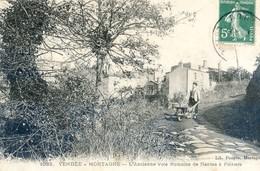 85 - Mortagne - L'Ancienne Voie Romaine De Nantes à Poitiers - Brouette - Mortagne Sur Sevre