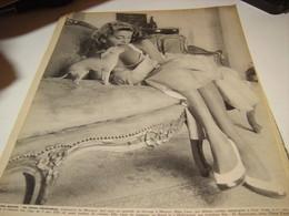 AFFICHE PHOTO  ABBE LANE 1954 - Affiches