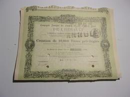 CHEMINS DE FER DE L'HERAULT (1890) - Unclassified